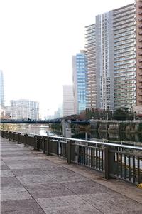 目黒川ジョギング