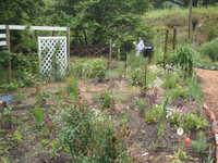 五月の庭~ NO2