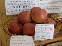 減農薬有機りんご&無農薬米こしひかり入荷
