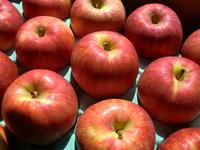 りんご&にんじん入荷します