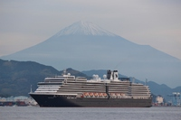 客船ウエステルダムと富士山と白鳥 清水港