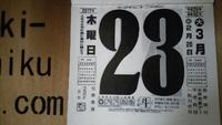 3/23(木)。木の家、静岡の木で家を建てませんか