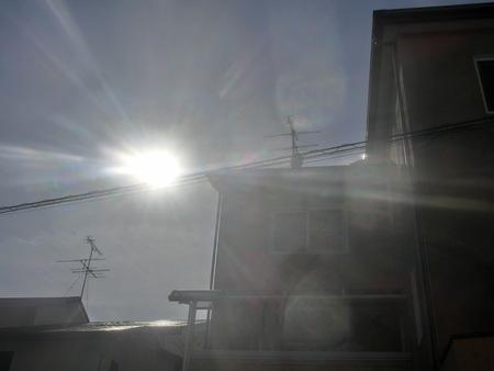 太陽は大事だね